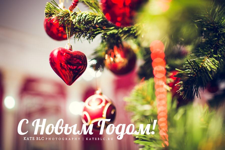 С новым годом! Фотограф Катрин Белоцерковская!