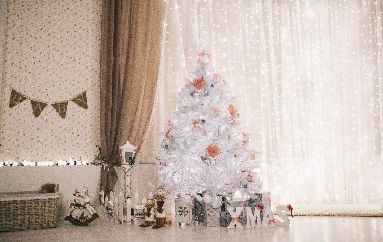 Фотосессия в новогодней фотостудии в Москве