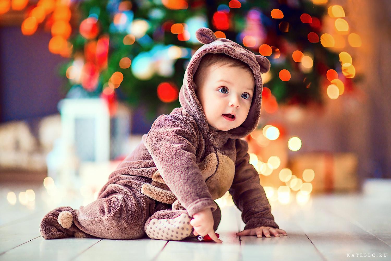 Малыш медвежонок на новогодней съемке в студии