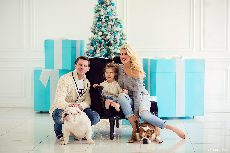 семейная фотосессия в студи с собаками