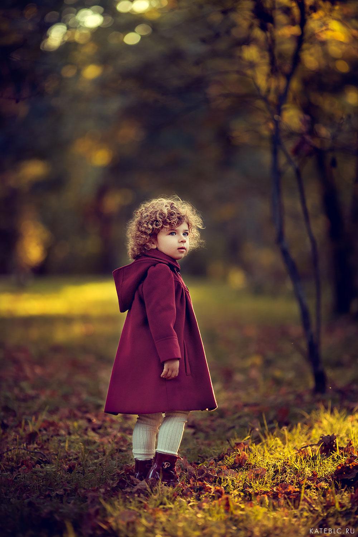 фотосессия в осеннем лесу. семейный фотограф москва