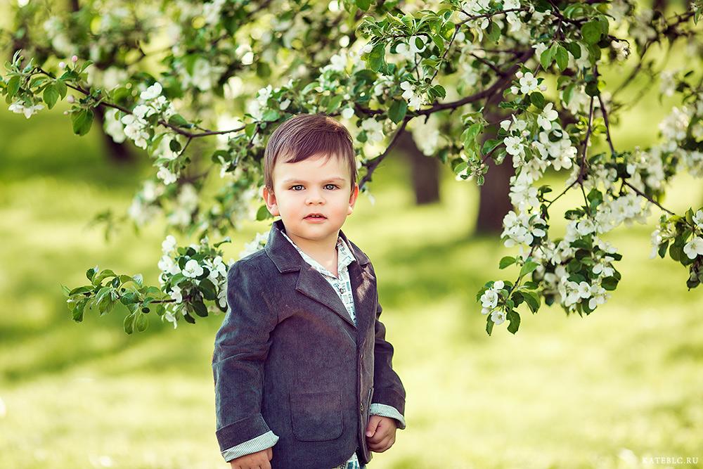портрет мальчика. Семейный фотограф в Москве